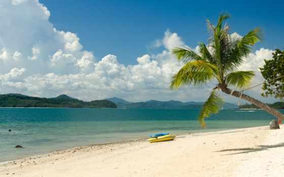 картинка, пляж, море, утро, небо, palm, summer, кокосовый