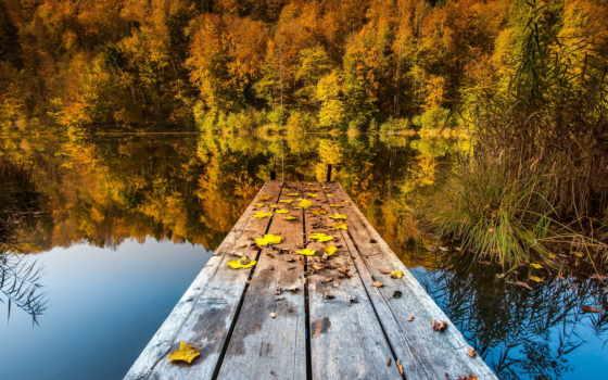 осень, природа, озеро, листья, мост, красивые, самые, оригинал,