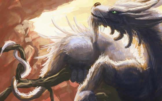 дракона, дракон, драконы
