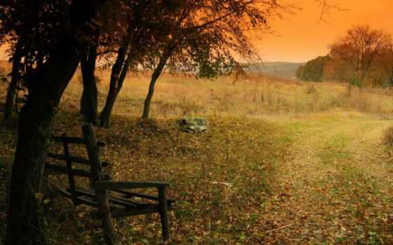 дерево, дорога, time, года, закат, осень, фоны, картинка, категории, природа,