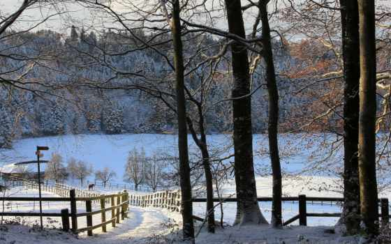 ферма, winter, поля, снег, природа, hills, пастбище, animals, trees, landscapes,
