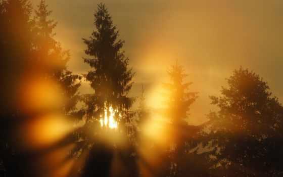 природа, закат, заставки
