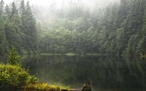 природа, сша, landscape, цвету, trees, леса, oblaka, озеро, mooselookmagunt, природы,