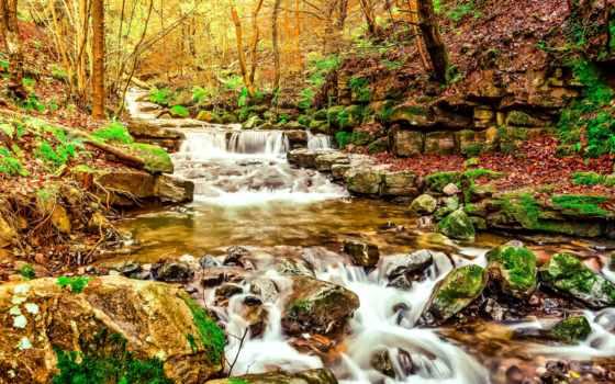 природа, осень, картинка, камни, водопады, ручей, лес, dingo, trees,