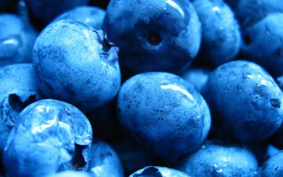черника, ягода, full, качестве, dark, wet, капли,
