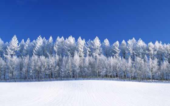 plan, awd, снег