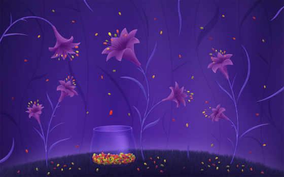 цветы, конфетки