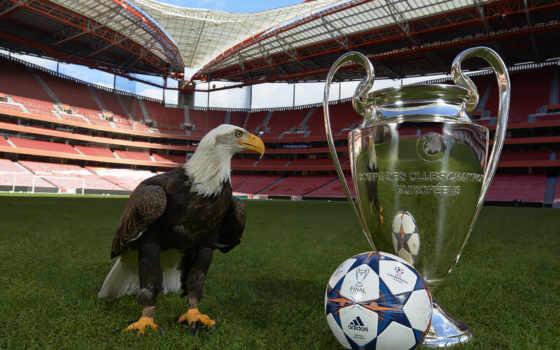 champions, league, чемпионов