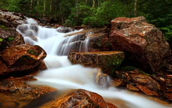 ручей, лес, природа