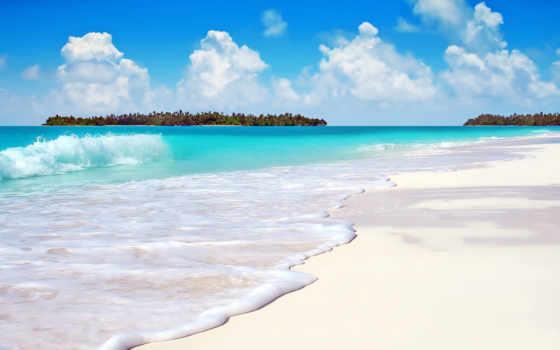 пляж, море, главная, пальмы, берег, ocean, песок, страница, нояб, волна,