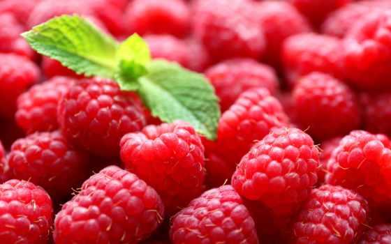 малина, еда, ягоды, мята, красивые, листики, заставки, ягода, красная,