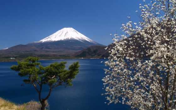 japanese, гора, фудзияма, море, весна, коллекция, горы, остров, хонсю, вулкан, фудзи,