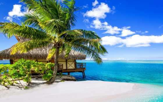 pinterest, plaja, voyage, tahiti, правило, natural, свет, mare, company, tropical,