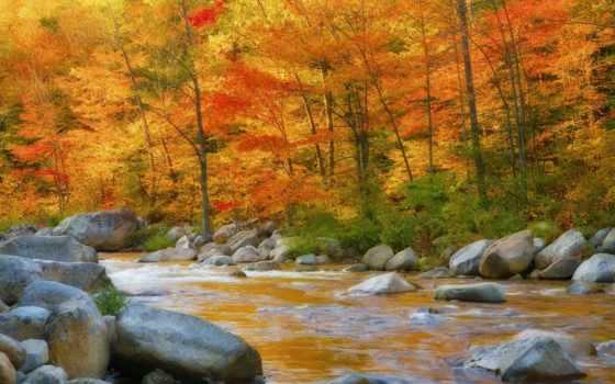 природа, река, free