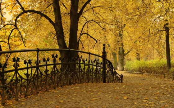 осень, парк Фон № 33558 разрешение 1920x1200