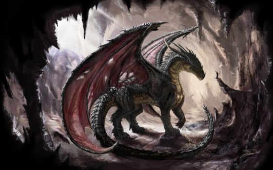 дракон, свой, совершенно