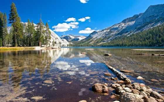 yosemite, park, national, озеро, tenaya, california, тема,