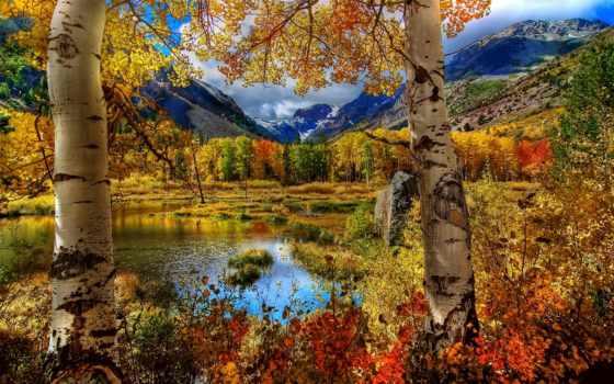 осень, landscape, красивый, осенние, season,