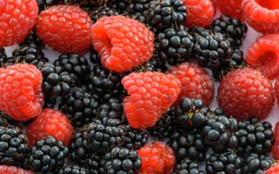 free, natural, еда, фото, ipad, джем, плод, preparations, jars,