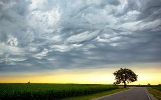 небо, amazing, clouds, природа, stormy, yellow, landscape, буря, дорога,