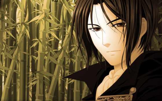 anime, сакуры, тосидзо, хидзиката, розовой, бледно, демонах, сказание, hijikata,