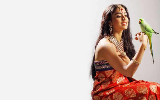 девушка, devushki, indian, часть, попугай, масть, shriya, pinterest, невеста, национальных,