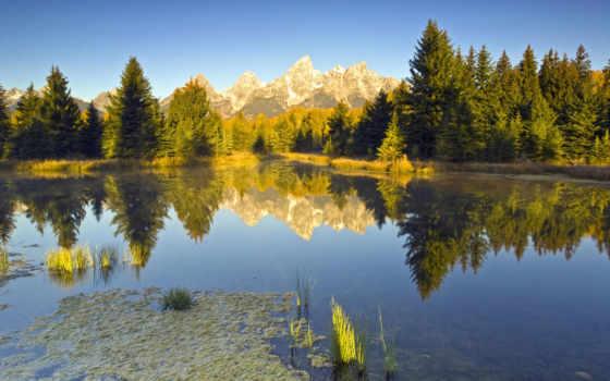 красивые, summer, природа, park, incredible, national, фотообои,
