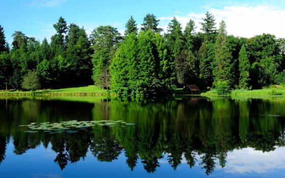 коллекция, озера, природа, trees, осень, озеро