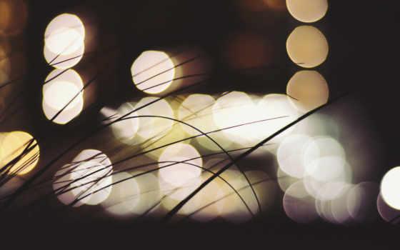 трава ночью, огни