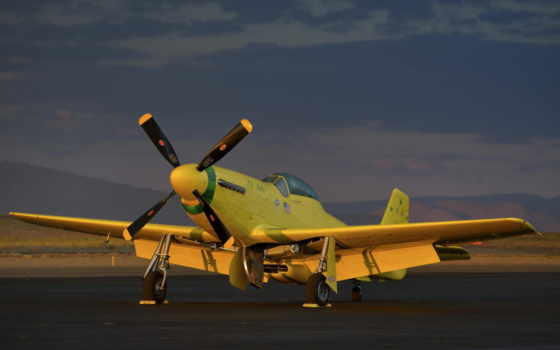 warbird, истребитель, mustang, wwii, самолеты, самолёт, авиация, yellow,