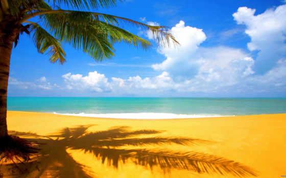 summer, море, пользователя, яndex, коллекция, коллекциях,