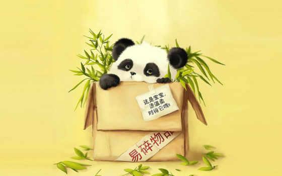 панда, бамбук, посылка, ipad, посылке,