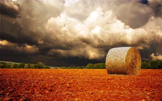 поле, облака