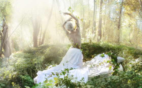 лес, фея, об