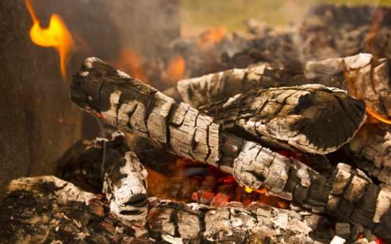 дрова, огнь
