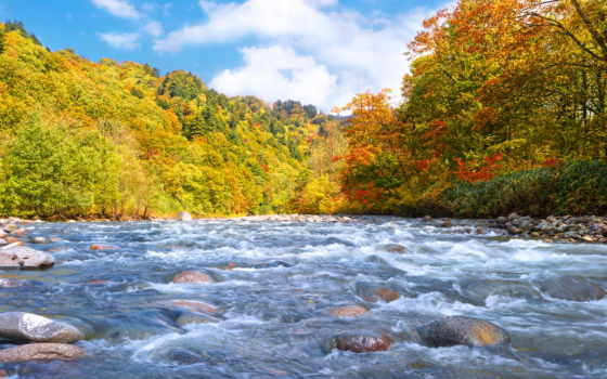 осень, река, страница, ранняя, лес, камни, природа, android, широкоформатные,