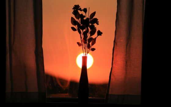 cvety, desktop, окно
