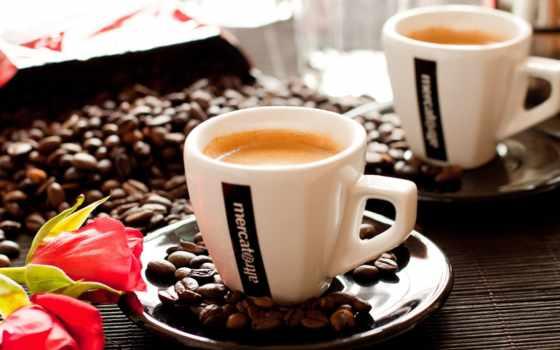 coffee, cup, зерна, cvety, cappuccino, skin, напиток, пенка,