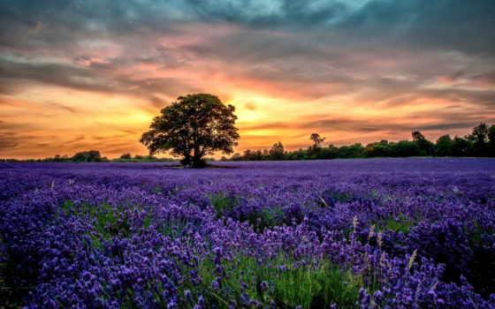 красивые, природа, природы, пейзажи -, небо, качестве, гора, планеты, разных, fonday,