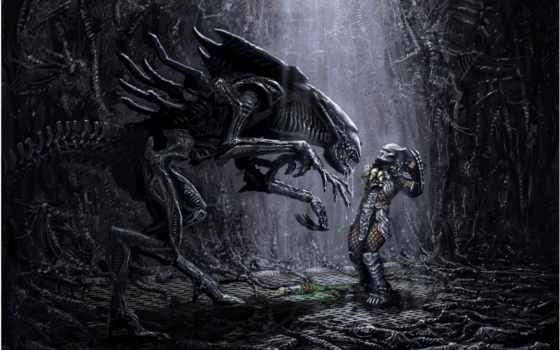 alien, predator
