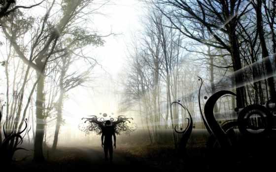 лес, angel, black