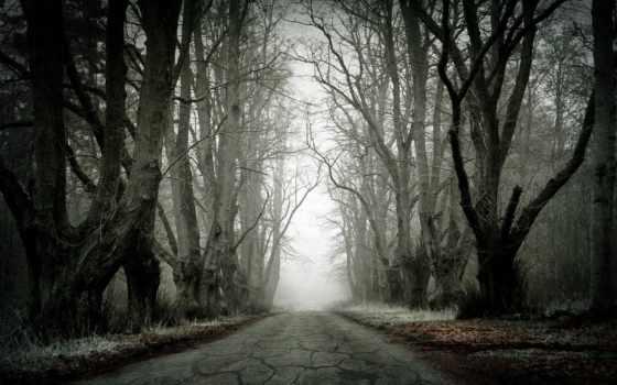 landscape, дорога, trees, ionizer, оригинальное, качество, металл, музыка, высокое,