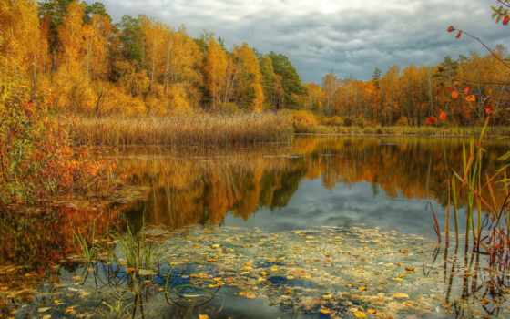 осень, природа, года, time, картинка, озеро, красиво, пруд, пасмурно,