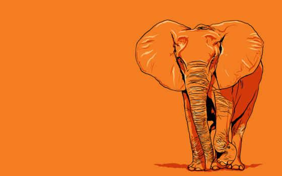 рисунок, слоник, карандашом, оранжевый, слон, графика, гигант,