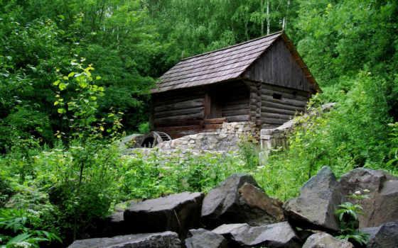 лес, house, trees, дерево, wooden, браун, изба, lodge, природа, surround