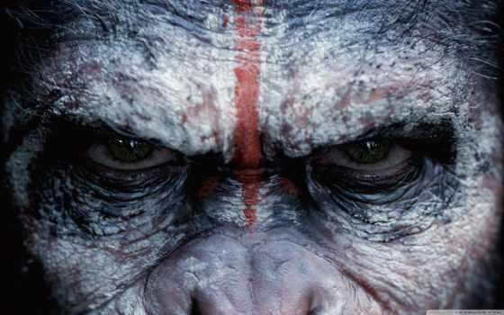 обезьян, planet, revolution, обезьяны, фильмы, сайте, сниматься, планеты, war, нашем, выберите,