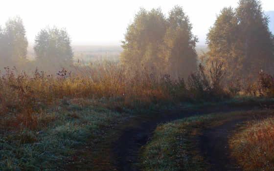 пейзажи -, трава, trees, природа, поле, mobile, free, zedge,