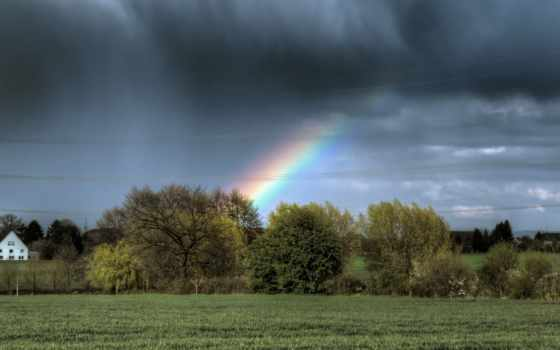 regenbogen, bume, hintergrund, desktop, amazing, april, campo, mixed,