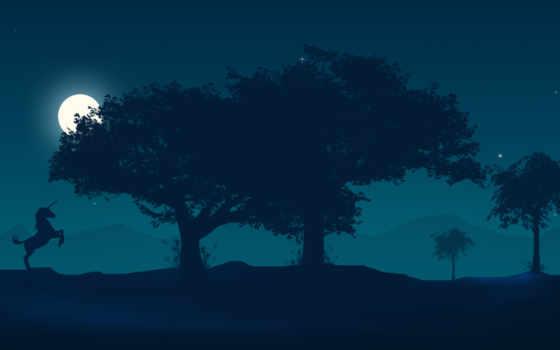 дерево, high, free, ночь, pictures,