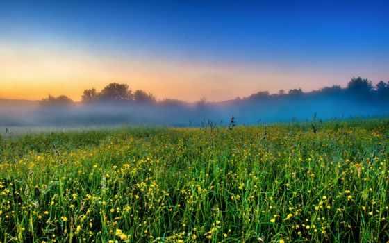 природа, заставки, туман